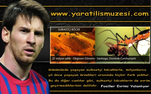 Messi 2013 fosil sergisi adnan oktar harun yahya evrim teorisi