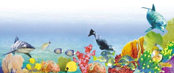 deniz canlilari evrim teorisi adnan oktar harun yahya pkk