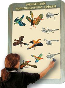 darwinistlerin sahte archæopteryx cizimleri
